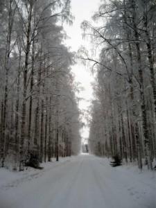 joulu 2018 maatila Joulu   Mannila Rantakatti joulu 2018 maatila